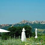 The countryside with Todi on a hill