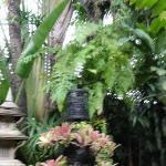 Green green garden