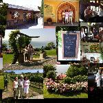 Wine Tour Lake Country