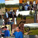 Naramatelicious Wine Tour