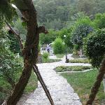 The hotel garden