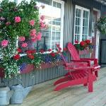 Bountiful Flowers on Cottage Decks