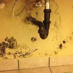 under the sink