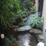 Cute Koi garden by stairs/ breakfast area