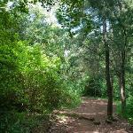 A nice park in Nairobi
