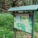 Signs at the Nairobi Arboretum
