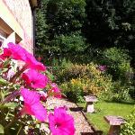 lovely flowery garden - good for the soul