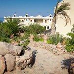 Bedouin Moon Hotel Garden