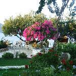 vista della terrazza giardino