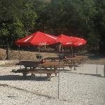 Picnic area with charcoal & gas grills