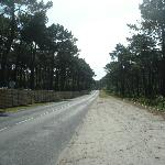 the main road outside the campsite