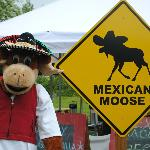 Foto de The Mexican Moose
