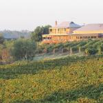Edgecombe Brothers Winery and Cafe