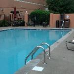 Nice clean gated pool area