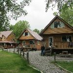 Lovely trees and cabins.