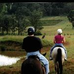 Horse Riding with the Kangaroos