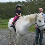 Pony rides at Hill Top