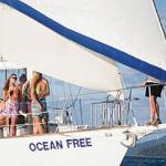 Cairns Premier Reef & Island Tours Photo