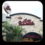 Alba Restaurante Espanol