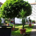 garden-courtyard