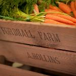Organic vegetables for sale in the Fordhall farm shop