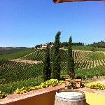 The winery Villa Carfaggio, Chianti Classico