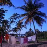 Giardino del Baobab