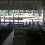 Vista desde la 2ª planta