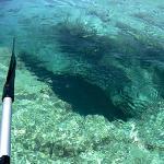 Blue Hole Kayaking and Snorkeling