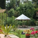 jardin de la maison d'hote