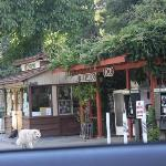 Garage and General Store