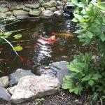 Koi Garden on Inn Grounds