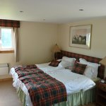 Double room for adult guests