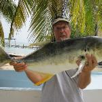 Crevalle jack caught from the pier