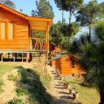 Billede af Hotel Pinewood Cottages Kasauli