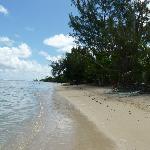 La plage de la pension