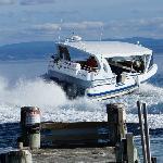 Fantastic Boat Trip