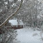 winter wonderland - the view from our room