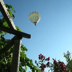 Hot air balloons float by every morning