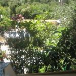 A little paradise garden
