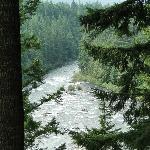 The roaring river at Roaring River