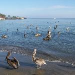 playa- amanecer