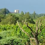 vue sur les vignes et sur le château de Monbadon