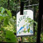 The Bakery Cafe sign, featuring white-throated magpie-jays