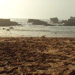 La plage proche de l'hotel