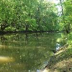 The Galien River on our property