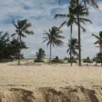 Beach area