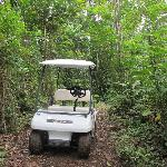 Our golf buggy - it came on lots of travels with us!