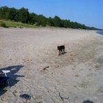 very wide beaches