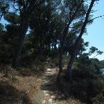 Weg zum Leuchturm an der Buchtspitze